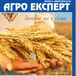 АЕ_21_cover