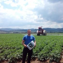 Традиция в картофопроизводството – Югозападна България