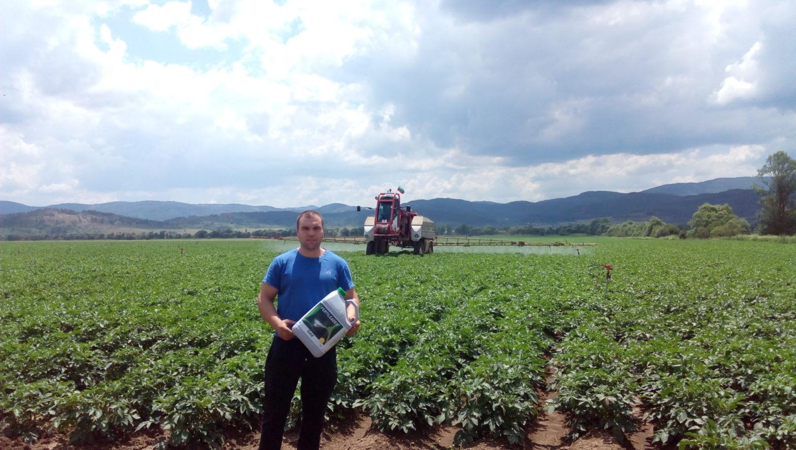 Традиция в картофопроизводството