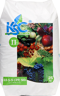 KSC II