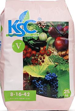 KSC V