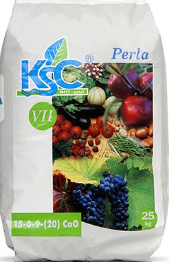 KSC VII – Perla
