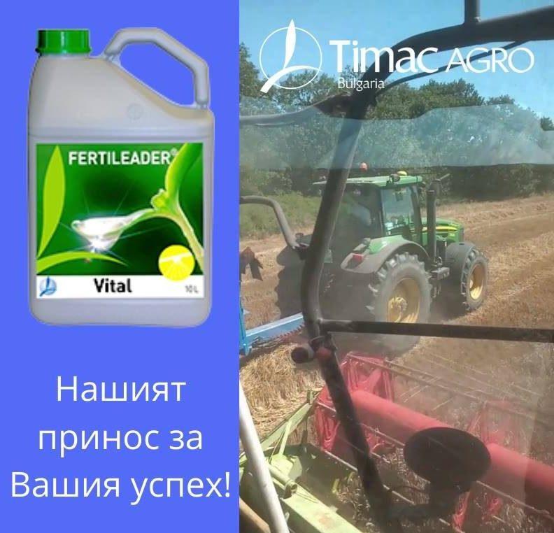 Жътва на пшеница в Старозагорско