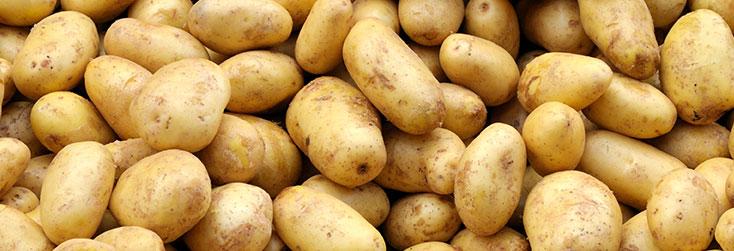 Томбола за картофопроизводители, за заявки и доставки в периода от 11.01 до 30.04.2021г.